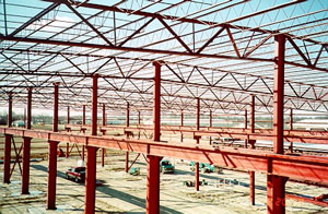 Steel Roof Joists and Deck Structure